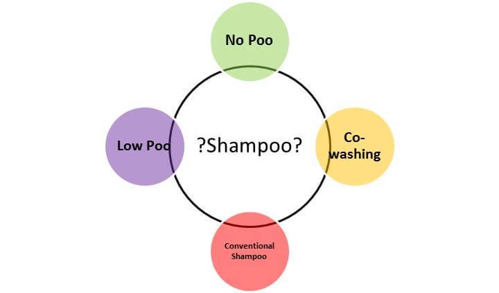 Shampoo Diagram