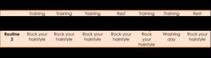 Training & Washing Routine Schedule