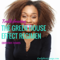 Trableshouting The Green House Effect Common Issues