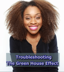 Troubleshooting The Green House Effect