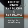 Know The Difference Between Shedding a