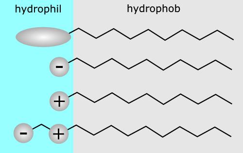 Surfactant Classification