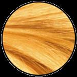 Golden Wheat Hair Colour