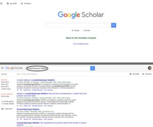 Cosmetic Ingredient Dictonary_GoogleScholar1